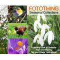 Fotothing Book of Seasons, Part One - Spring  Fotothing is pleased to reveal more about our Fot...
