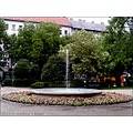 budapest karolyi garden well fountain tree bush flowers house