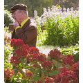 Gentleman in the Gardens