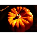 pumpkin halloween october autumn France pumpkin07