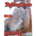 horse magmypic rolling stone