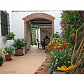 new archway terrace garden home Alora Andalucia Spain