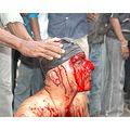 Shias Shiasm Shiite Blood and Faith _violence