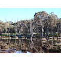 reflectionthursday great eastern highway perth littleollie