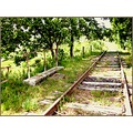 railway train rusty fields France wood iron