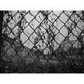 chainlink fence blackwhite bw industry