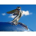Chrome Angel Plymouth Blue Sky Sofiero Helsingborg Sweden Skane 2012