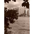 Millbank London