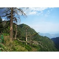 Ayubia National Patk Murree Punjab Pakistan Travel Hills Forest Recreation Tour