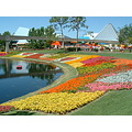 2006 Flower Festival at EPCOT