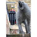 Tower of London. The baboon was one of many species of animal given to past monarchs of England.