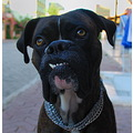 SMILE !