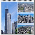 Willis Tower Chicago Illinois USA collage