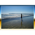 sunbather water ocean beach coronado pacific