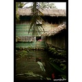 ...a house in a fish farm, Lakewood Philippines...