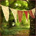 bunting donadea forest park trees