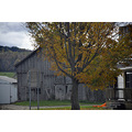 upstate newyork road autumn fall foliage barn house tree