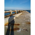 An old bridge becomes a breakwater and I cast my long shadow upon it.