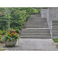 seattle seattlefph park freewaypark steps concrete path planter