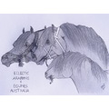 horses horse drawing art sketch
