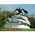 seaworld orlando florida sculpture flowers sign signage