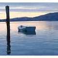 reflectionthursday boat post harbour basin dunedin littleollie