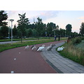 Holland Haarlem nature swans