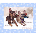 padme chihuahua hollybug cute snow january calendar dog dogs adorable