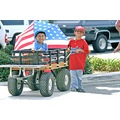 Countrypridefriday Grandsons Adam Mitch Presidents day 2004 roncarlin