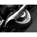 Harley Davidson Motorscycle BW Black White