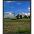 landscape lowland field tree bush pylon sky clouds
