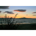 sunrise murraysbay murrays bay auckland rangitoto