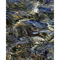 water sea tide turn pankey abstract wildspirit