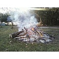fire bonfire newyearseve sunshine wood logs smoke trees