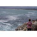 vacation africa 2012 gansbaai
