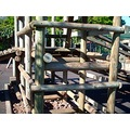 2008 madeira island portugal prazeres zoo playground wood fun