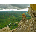 Monkey Hill Taken with a 2 megapixel Sony USC-30 pocket digital at a budhist hill temple in Myan...