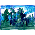 Algonquin Park, Canada. A very small sketch (approx.1x2cm) ... done during a canoe trip along ...