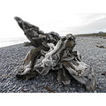 Gillespies Beach West Coast NZ Weesue Driftwood