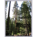 Birthday Wishes Wildspirit