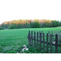 fence field landscape green