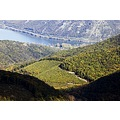 Hungary Visegrad mountain landscape nature forest Danube