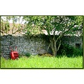 wheelbarrow country France summer field meadow wall stones tree nature grass red