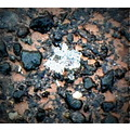 week 5 macro ice crystals pavement picasa 3