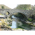 cenarth wales bridge