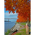 river hudsonriver bridge fallcolour fall autumn
