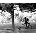 strange cycle BW peterpinhole