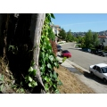 7 of 8