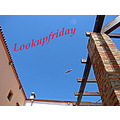lookupfriday