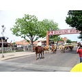 texas fort worth stockyards